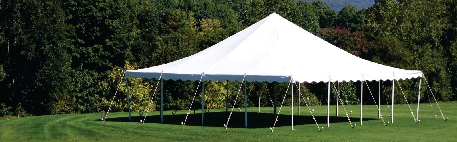 white on green green grass tents